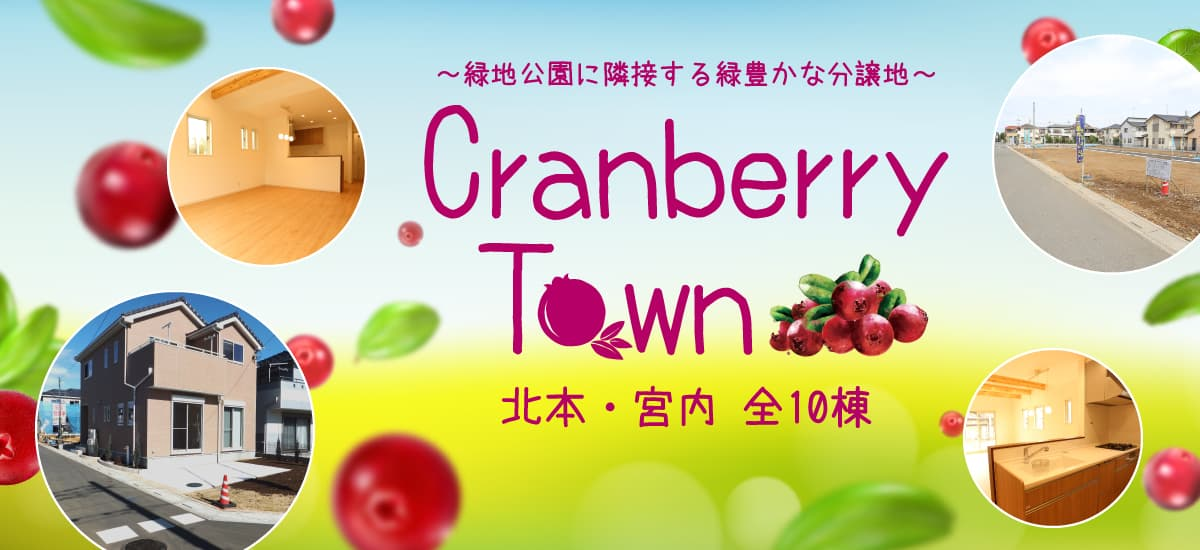 Cranberry Town